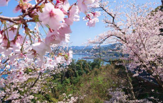 湯の児温泉神社祭り(桜まつり)