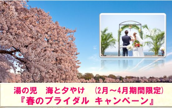 春のブライダルキャンペーン実施中!